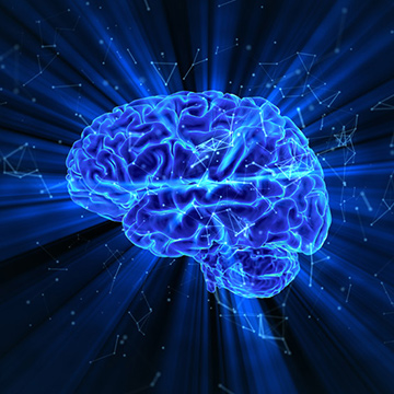 Researchers Examine Age Differences in How the Brain Perceives, Remembers