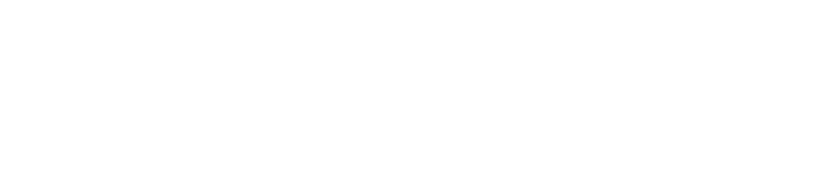 Lifespan Neuroscience and Cognition Laboratory